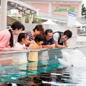 2019年 横浜高島屋の初売りは1月2日より、福袋は約1000種類を用意!