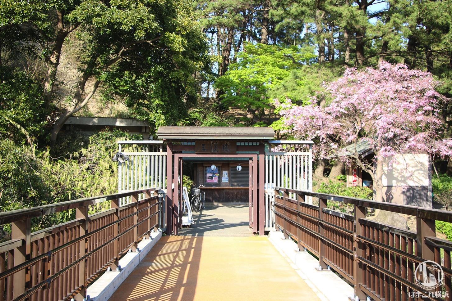 三渓園 入り口