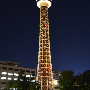 横浜マリンタワーがグレープフルーツカラーにライトアップ!特別プランも