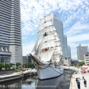 帆船日本丸「総帆展帆」「満船飾」6月2日に実施!横浜開港記念日