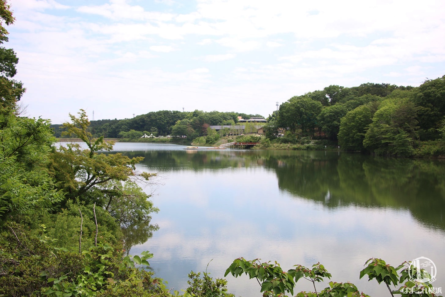 ムーミンバレーパークから見る湖