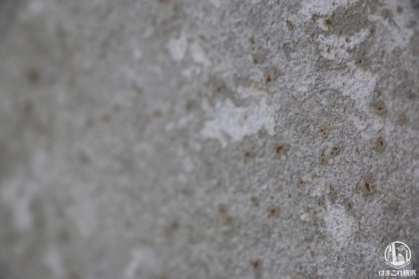 コーヒー豆を使用した壁