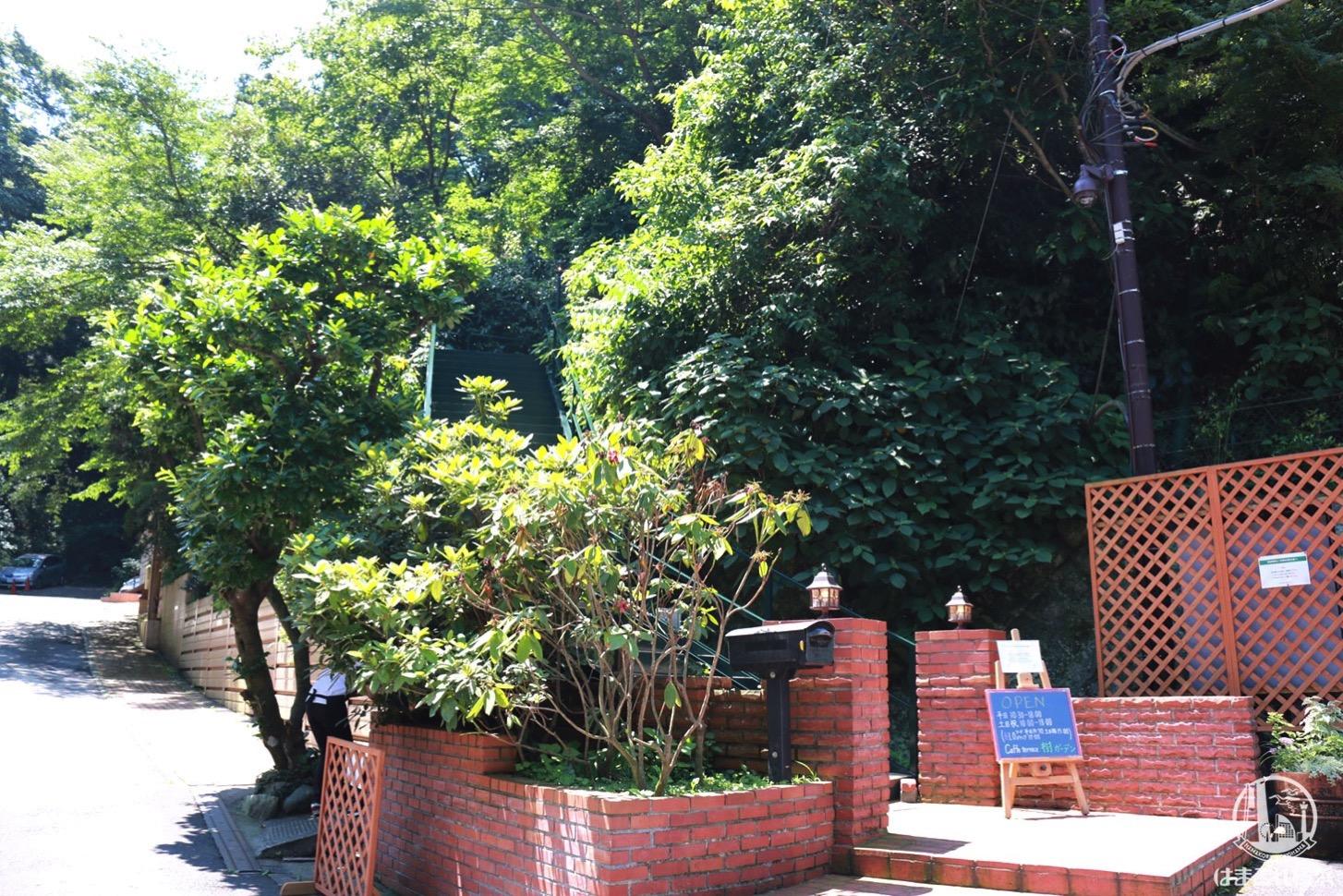 樹ガーデン 入り口の階段