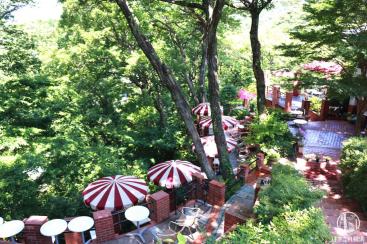 鎌倉「樹ガーデン」は大自然で癒されるお洒落カフェ!限定スイーツも