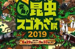 オービィ横浜 昆虫の世界をテーマに「変身!昆虫スゴわざ展2019」開催