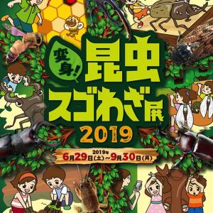 みんなの世界昆虫展2019