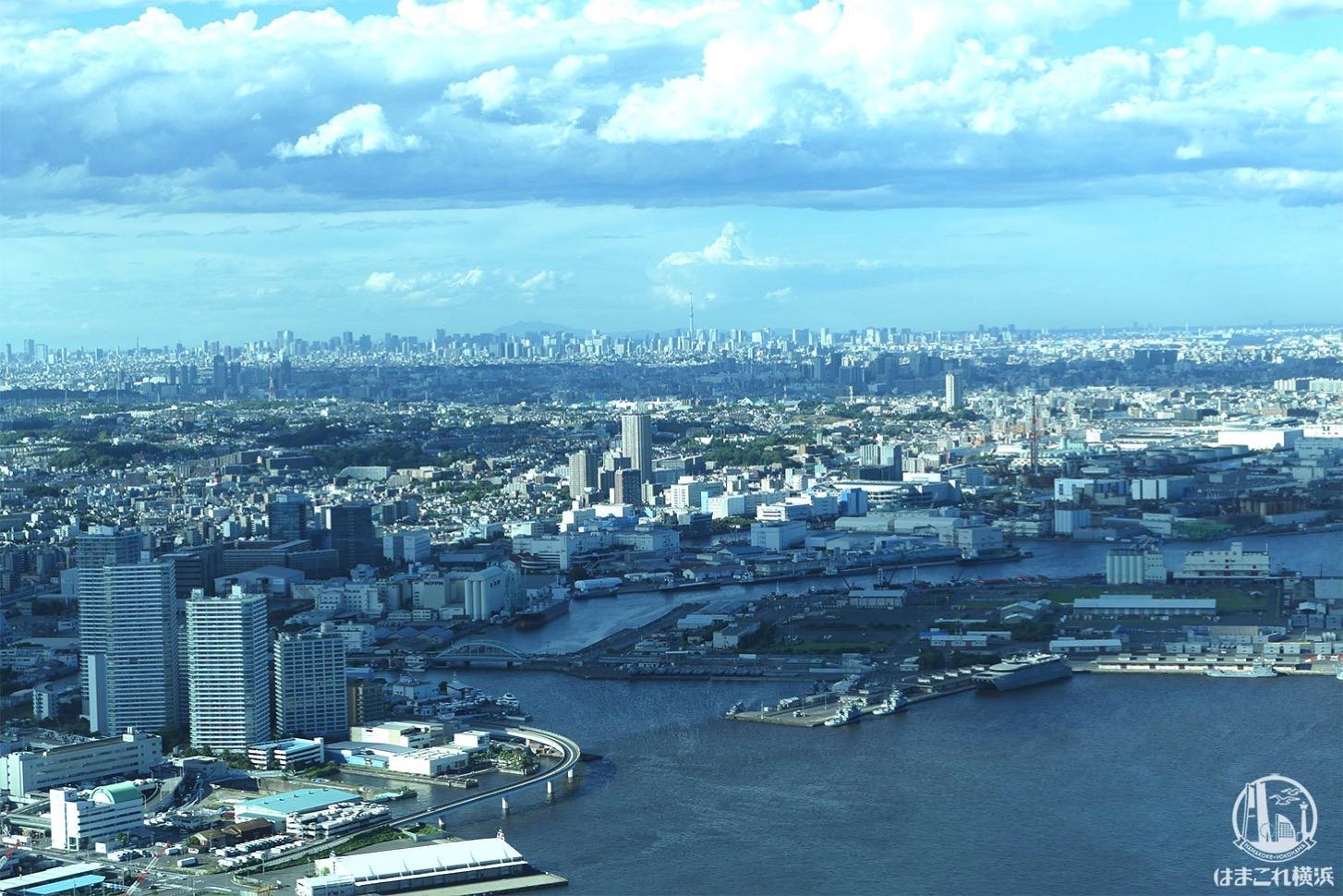 展望フロア「スカイガーデン」から見た東京スカイツリー