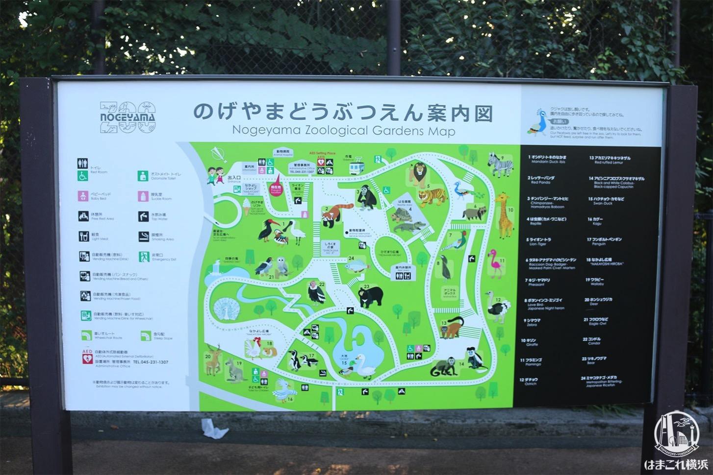 野毛山動物園 園内マップ