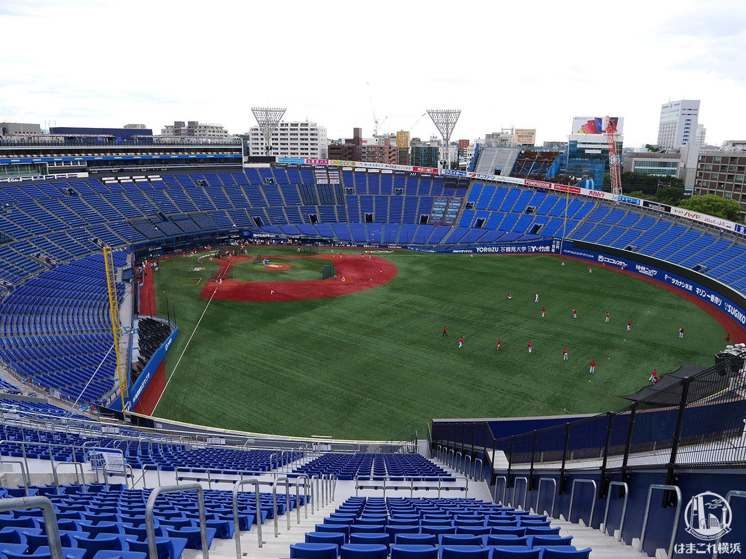 横浜スタジアム「ウィング席」観戦徹底レポ!感想・指定席最安値・注意点など