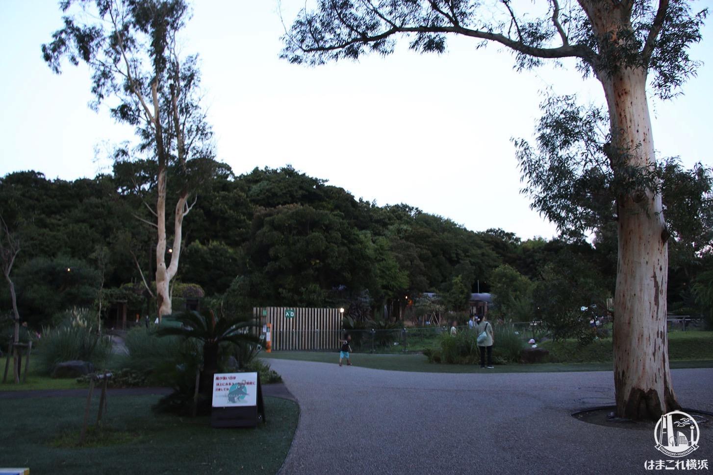 金沢動物園 夕暮れの雰囲気