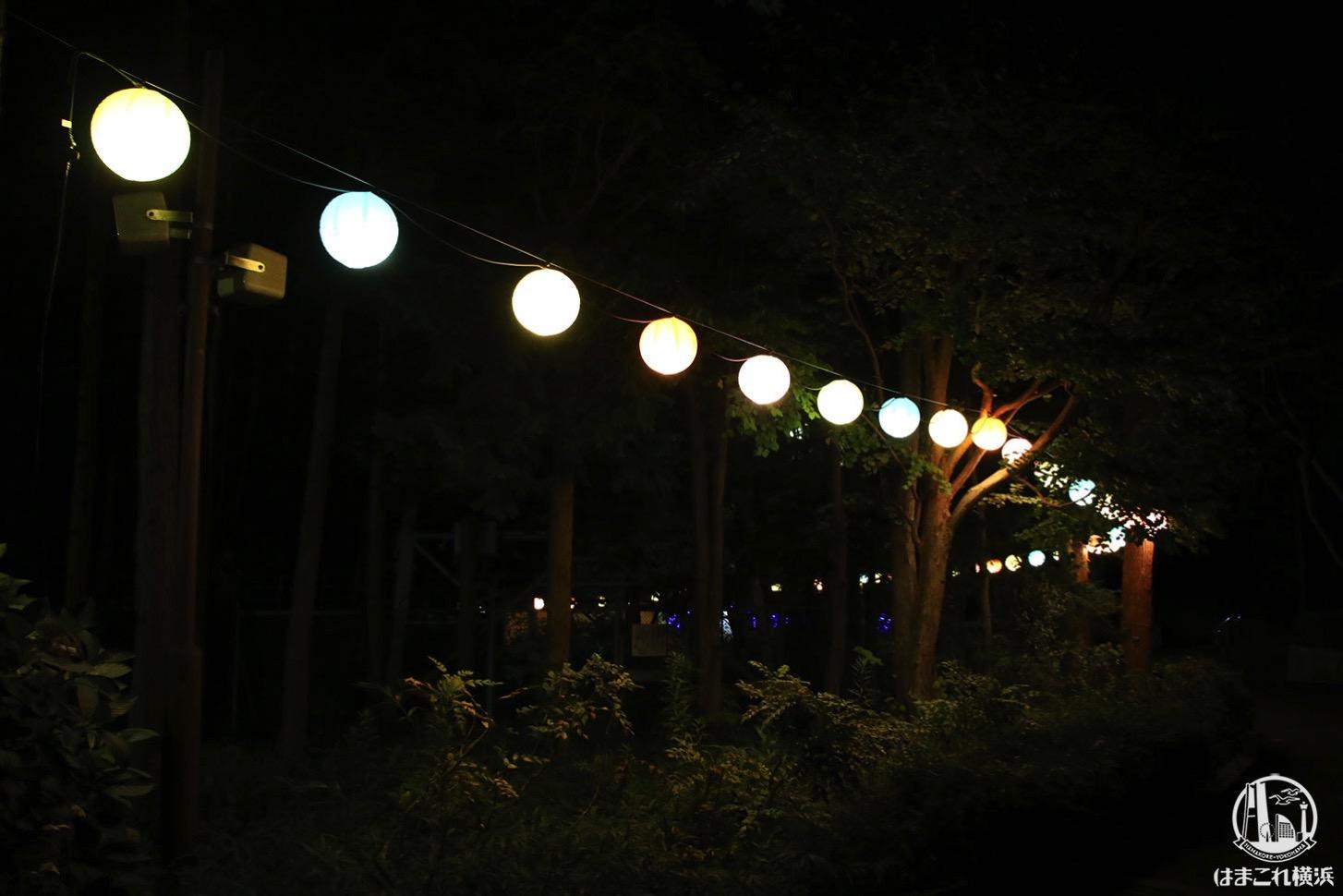 金沢動物園 夜の雰囲気