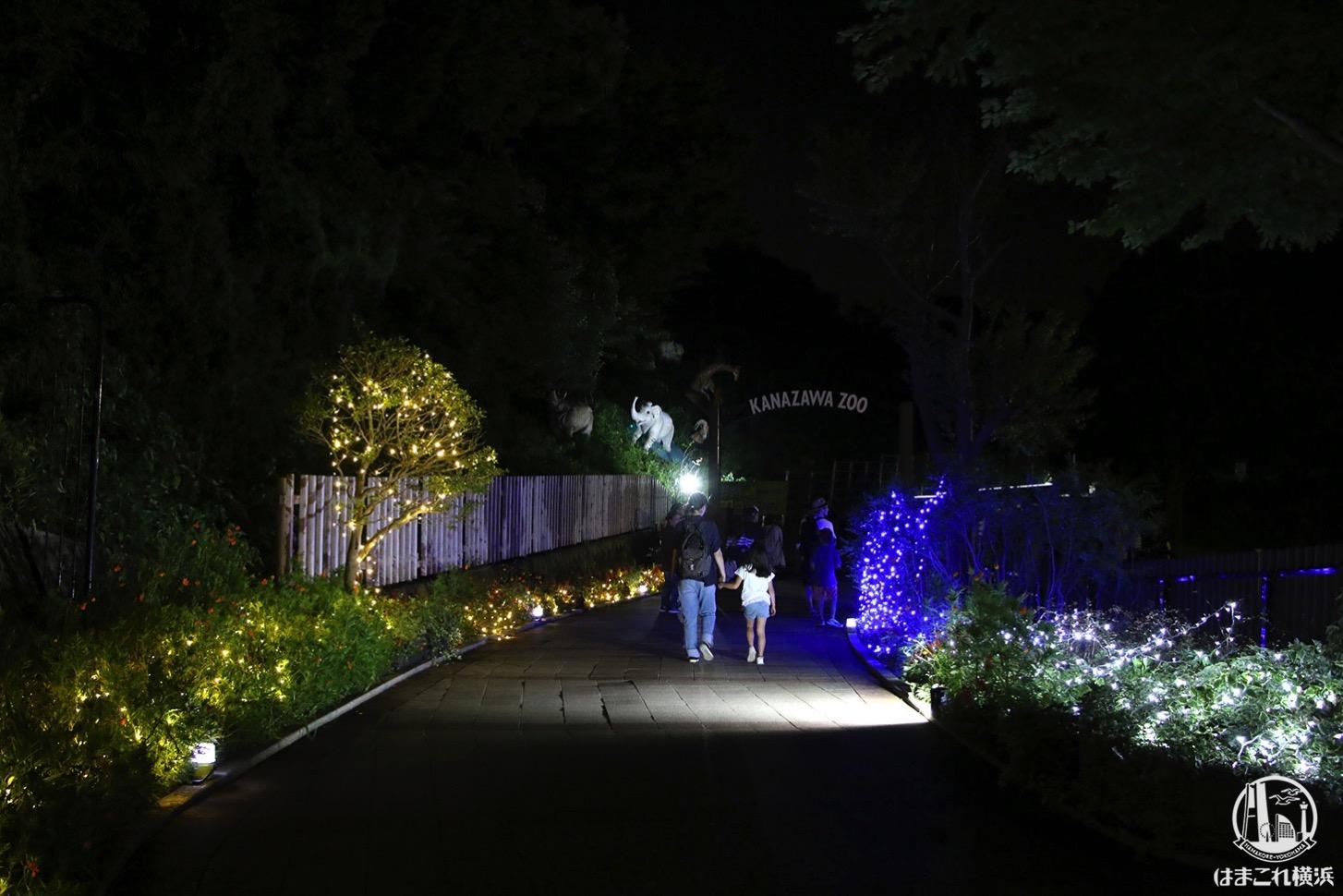 金沢動物園 夜の帰り道