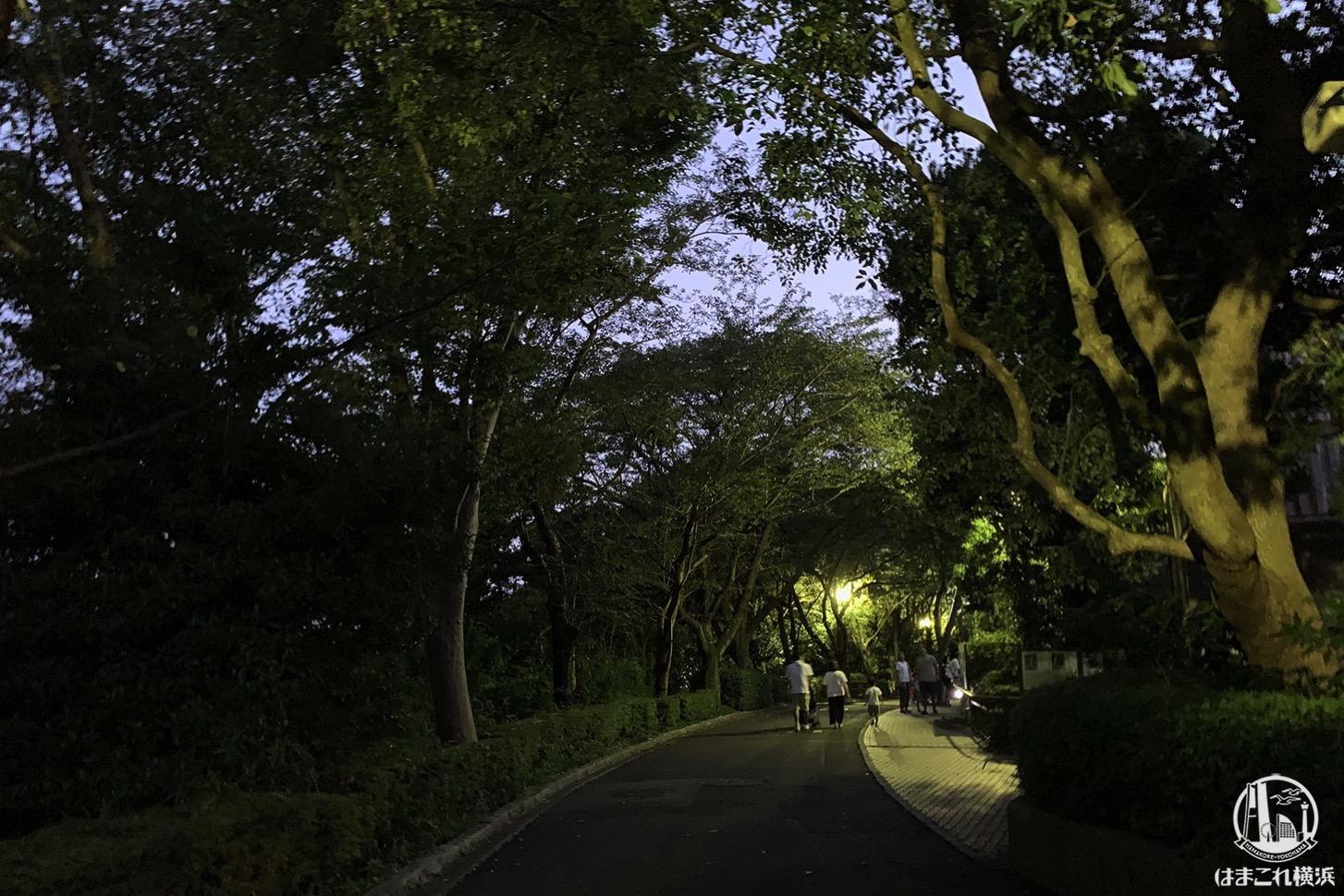 金沢動物園 夕方の雰囲気