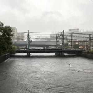 神奈川県 川の水位知る方法 帷子川や大岡川の水位をネットで確認
