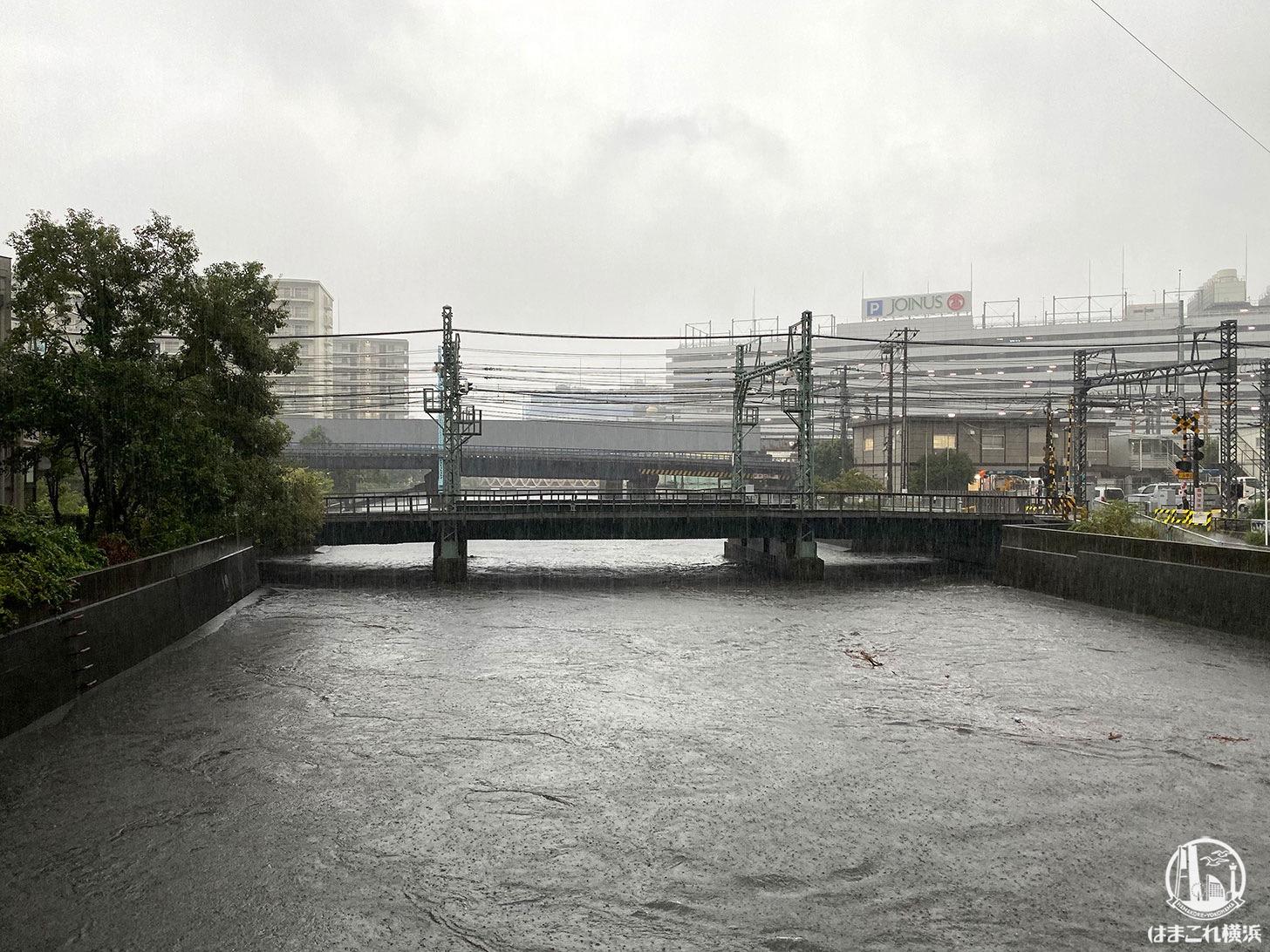 神奈川県の川、帷子川や大岡川の水位をネット上で知る方法・サイト