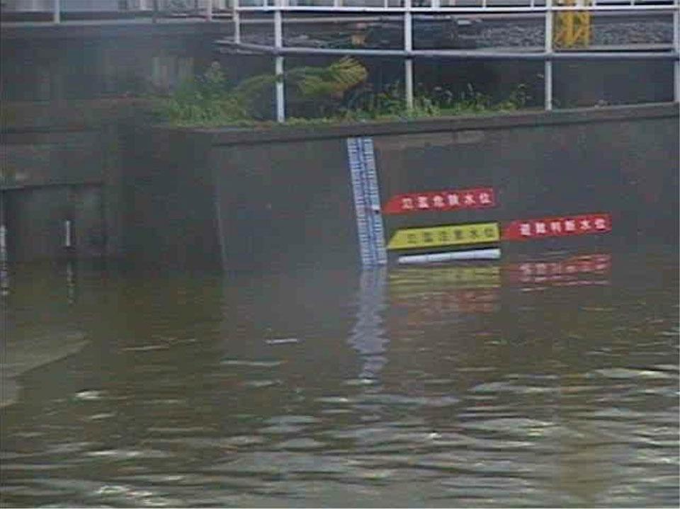 雨量水位情報で見た帷子川