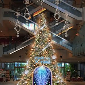 マークイズみなとみらいに体験型のクリスマスツリー登場!ナイトコンサートも