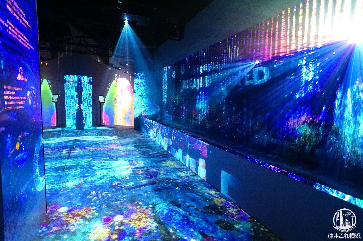 オーシャン バイ ネイキッド 光の深海展「入り口」
