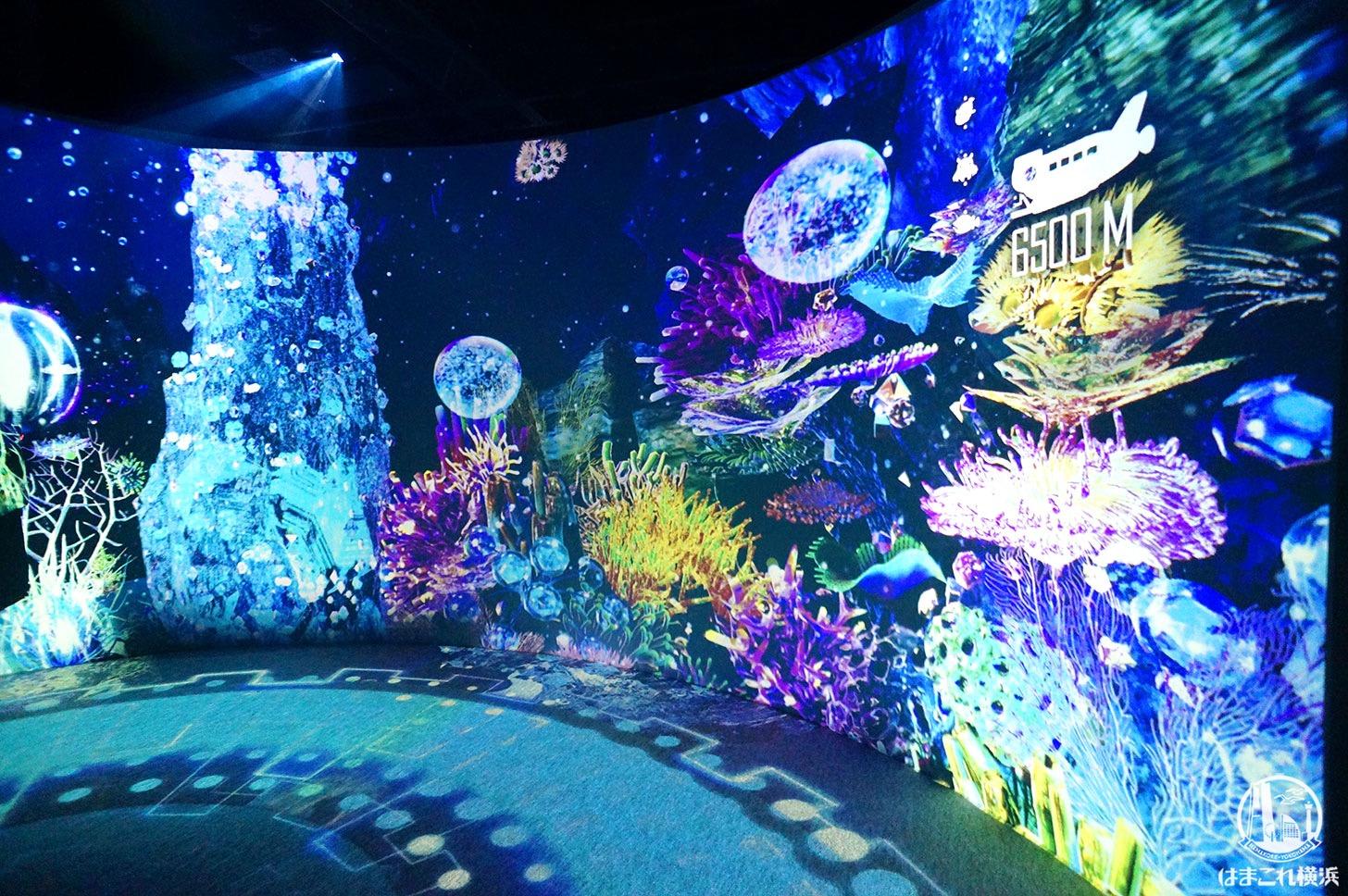 オーシャン バイ ネイキッド 光の深海展「水深6500メートルの世界」