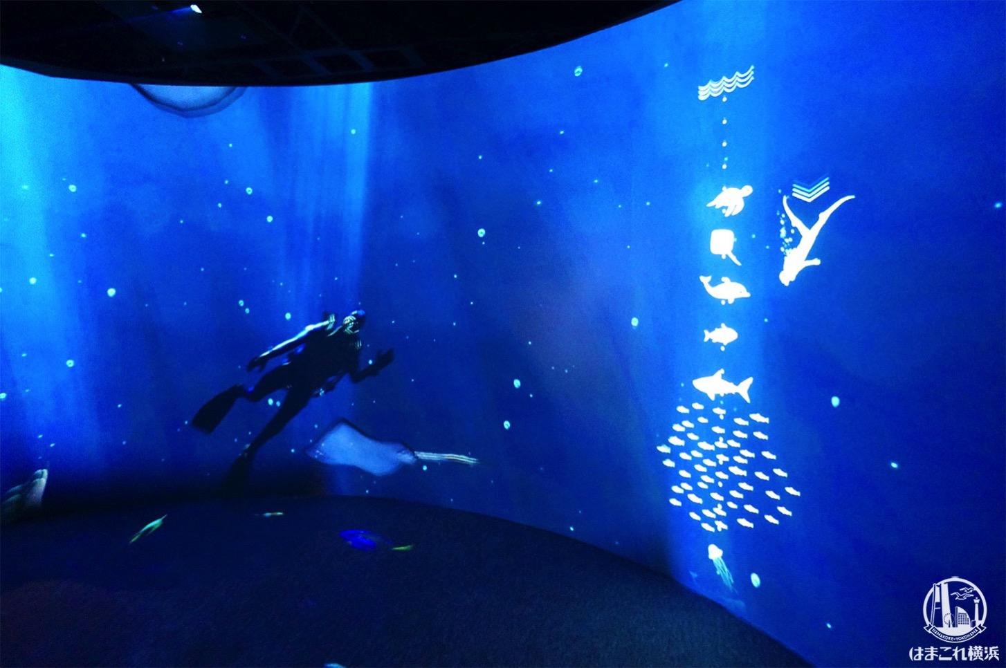 オーシャン バイ ネイキッド 光の深海展 横浜限定「ダイバー」