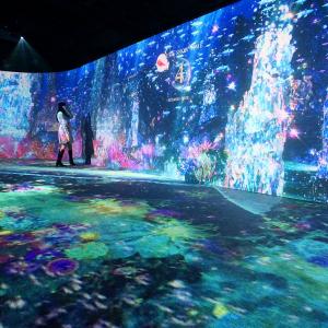 オーシャン バイ ネイキッド 光の深海展は幻想的世界の連鎖!横浜アソビル体験レポ