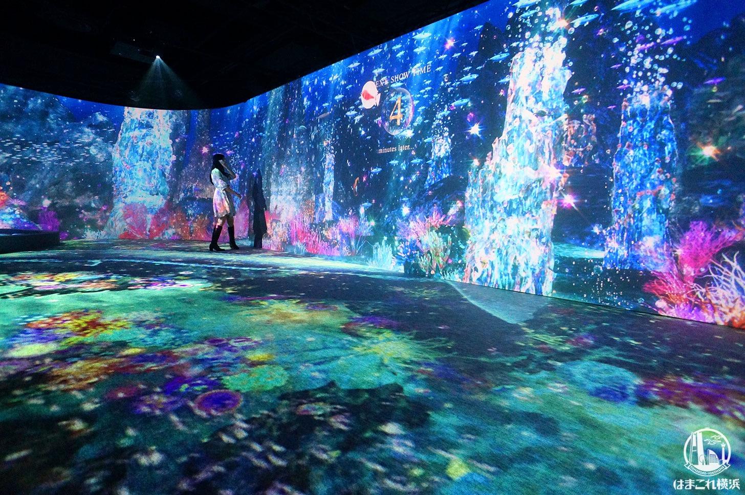 オーシャン バイ ネイキッド 光の深海展「プロジェクションマッピング」