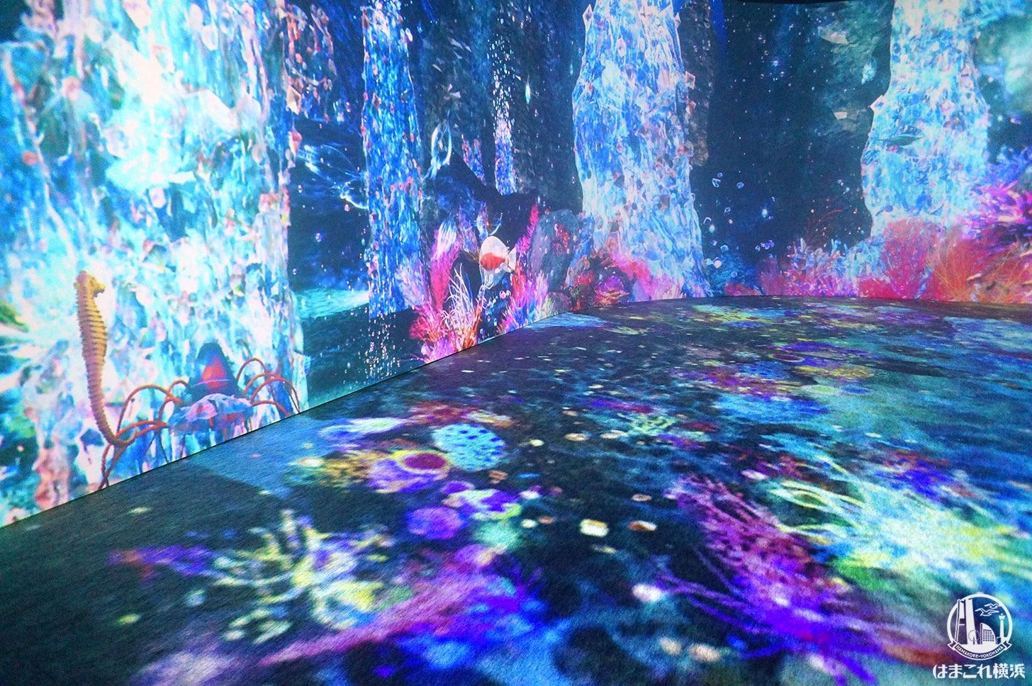 オーシャン バイ ネイキッド 光の深海展「インタラクティブコンテンツ」