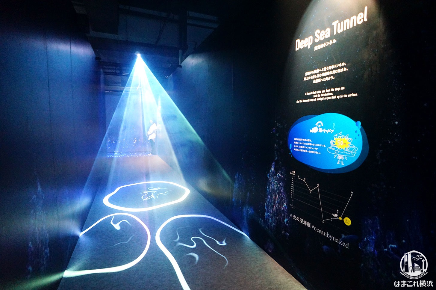 オーシャン バイ ネイキッド 光の深海展「光のトンネル」