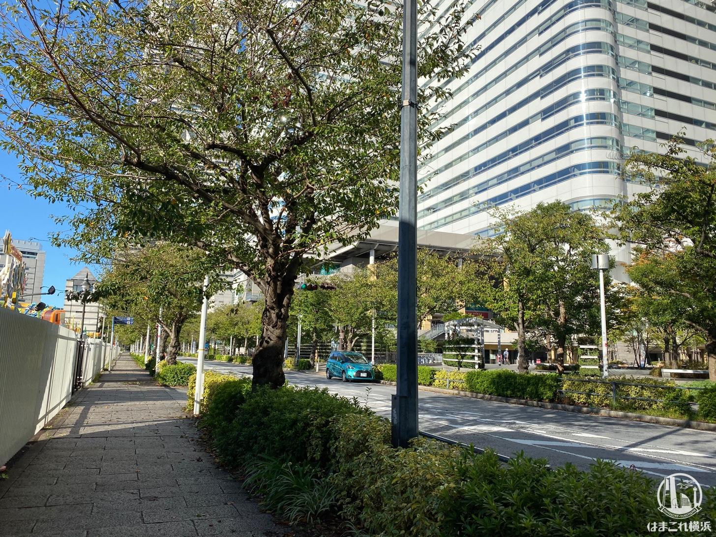 クイーンズスクエア横浜付近