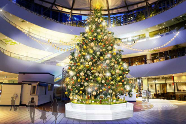 横浜ベイクォーター「クリスマスライトガーデン」開催!本物のモミの木のツリーなど