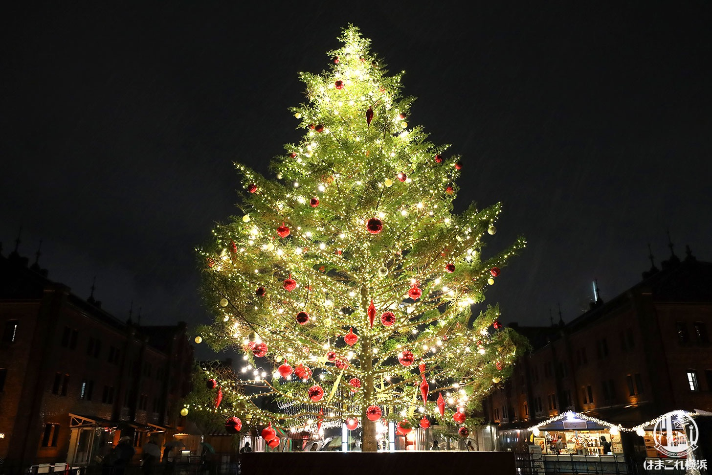 横浜赤レンガ倉庫 クリスマスマーケット・クリスマスツリー