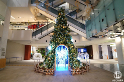 マークイズみなとみらいのクリスマスツリー点灯!ドームに入るとイルミネーション変化