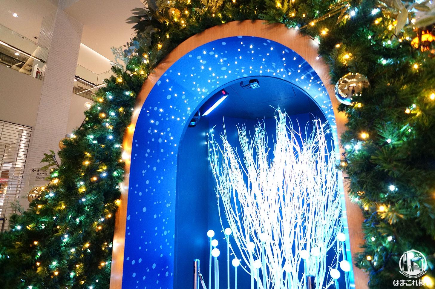 マークイズみなとみらい クリスマスツリー イルミネーション