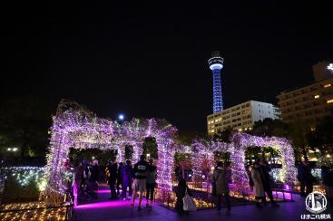 山下公園のイルミネーション点灯!光のバラ園が夜を彩り凄く良かった