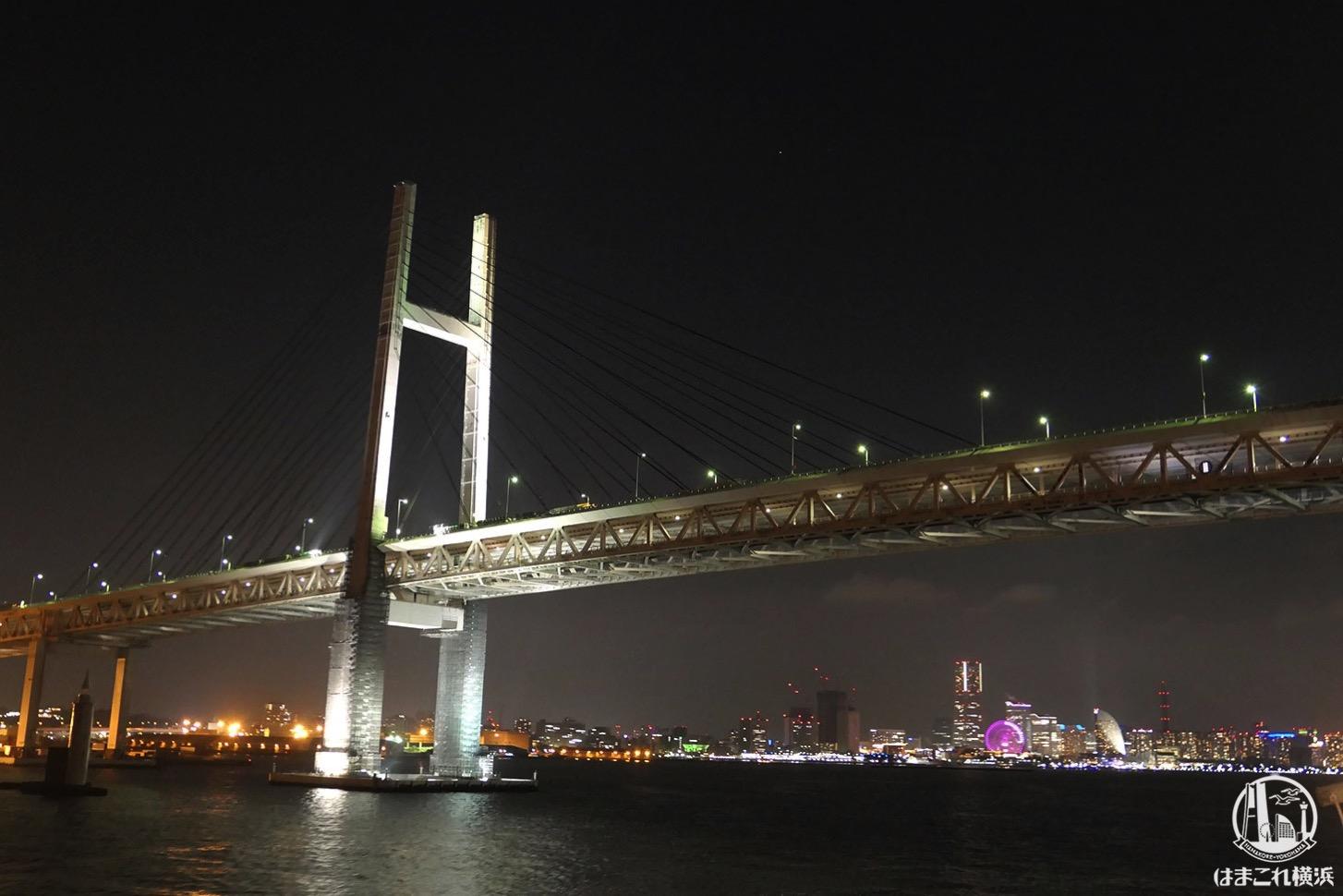 ロイヤルウイング 船上からの夜景