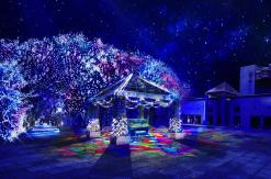 ヨコハマミライト過去最大級のイルミネーションで横浜駅とみなとみらいを光で繋ぐ!