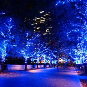 2019年 ヨコハマミライトのイルミネーション満喫!みなとみらいから横浜駅までイルミ散歩