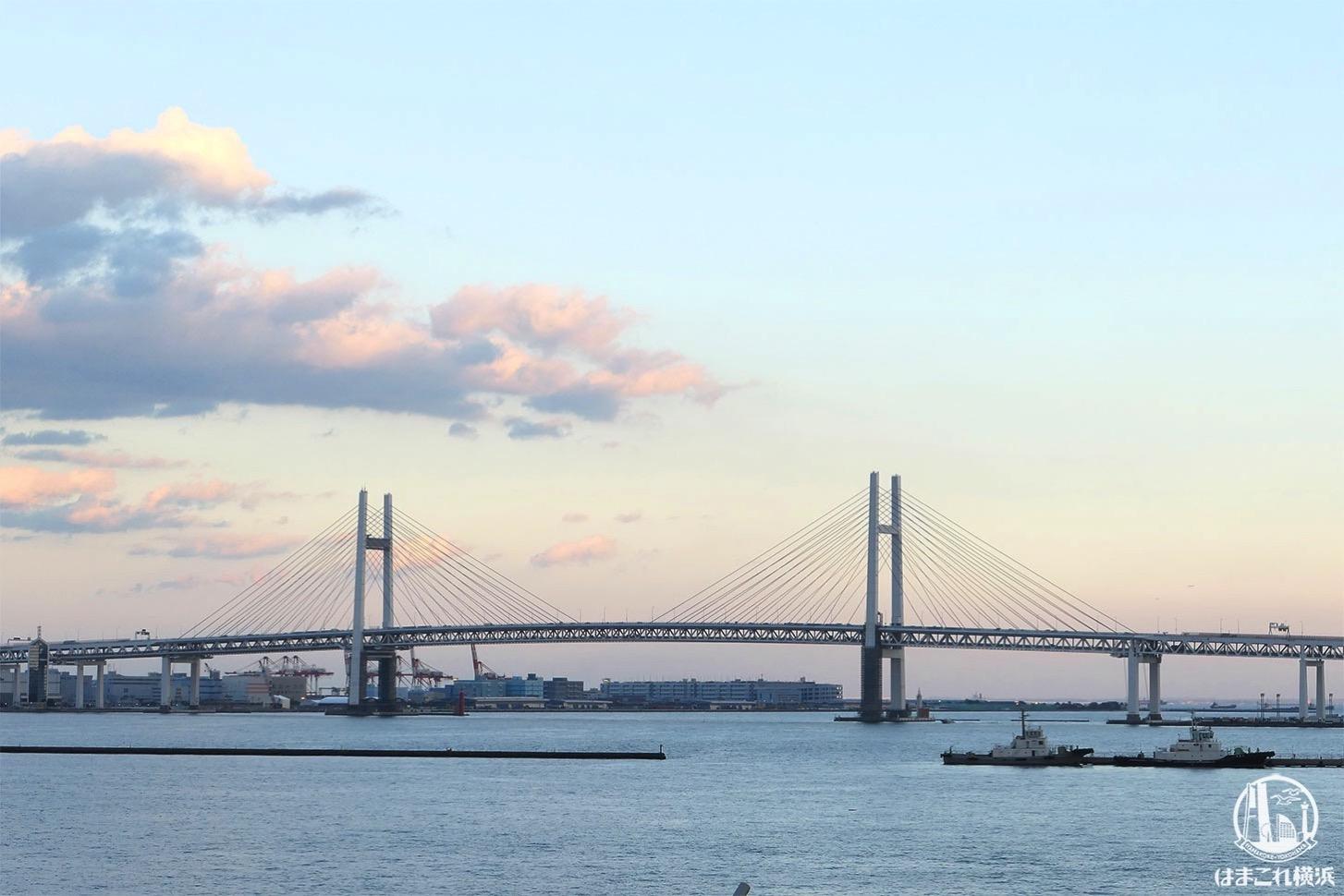 横浜港大さん橋国際客船ターミナル 屋上から見た横浜ベイブリッジ