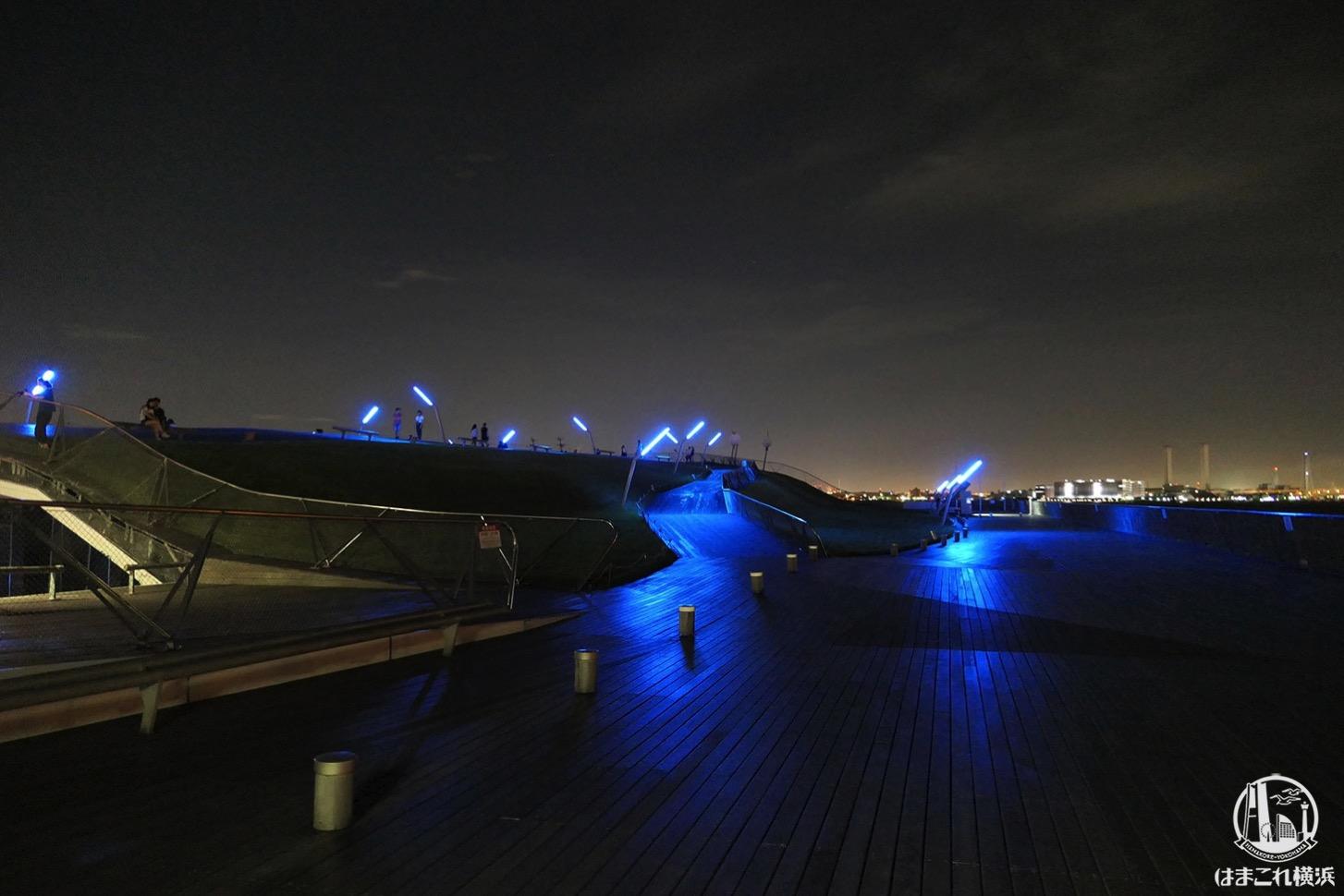 横浜港大さん橋国際客船ターミナル 屋上の夜景