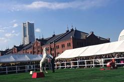 馬の祭典「ホースメッセ」横浜赤レンガ倉庫で開催!エキシビションにホースフェスタ