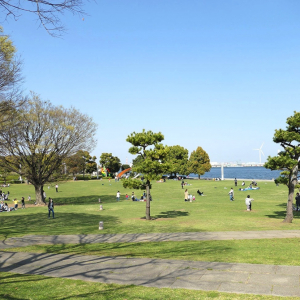 臨港パークは横浜港が超間近・自然豊かで散歩におすすめ!広大な芝生でのんびりと