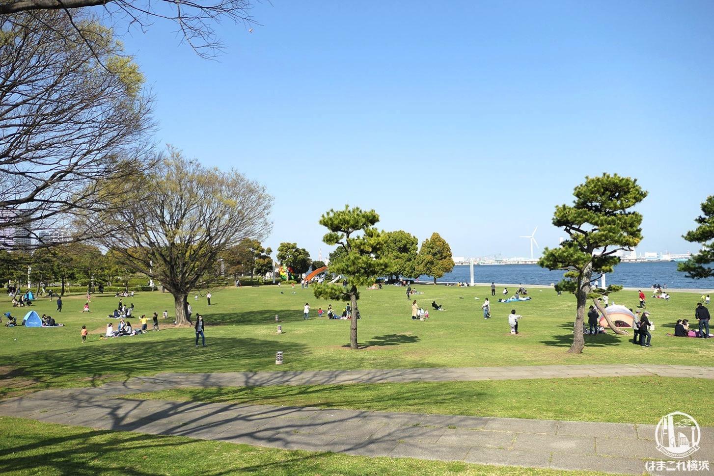 春の臨港パーク