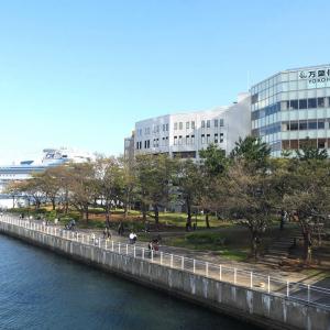 カップヌードルミュージアムパーク(新港パーク)は港が間近で心地良い!春は花見スポット