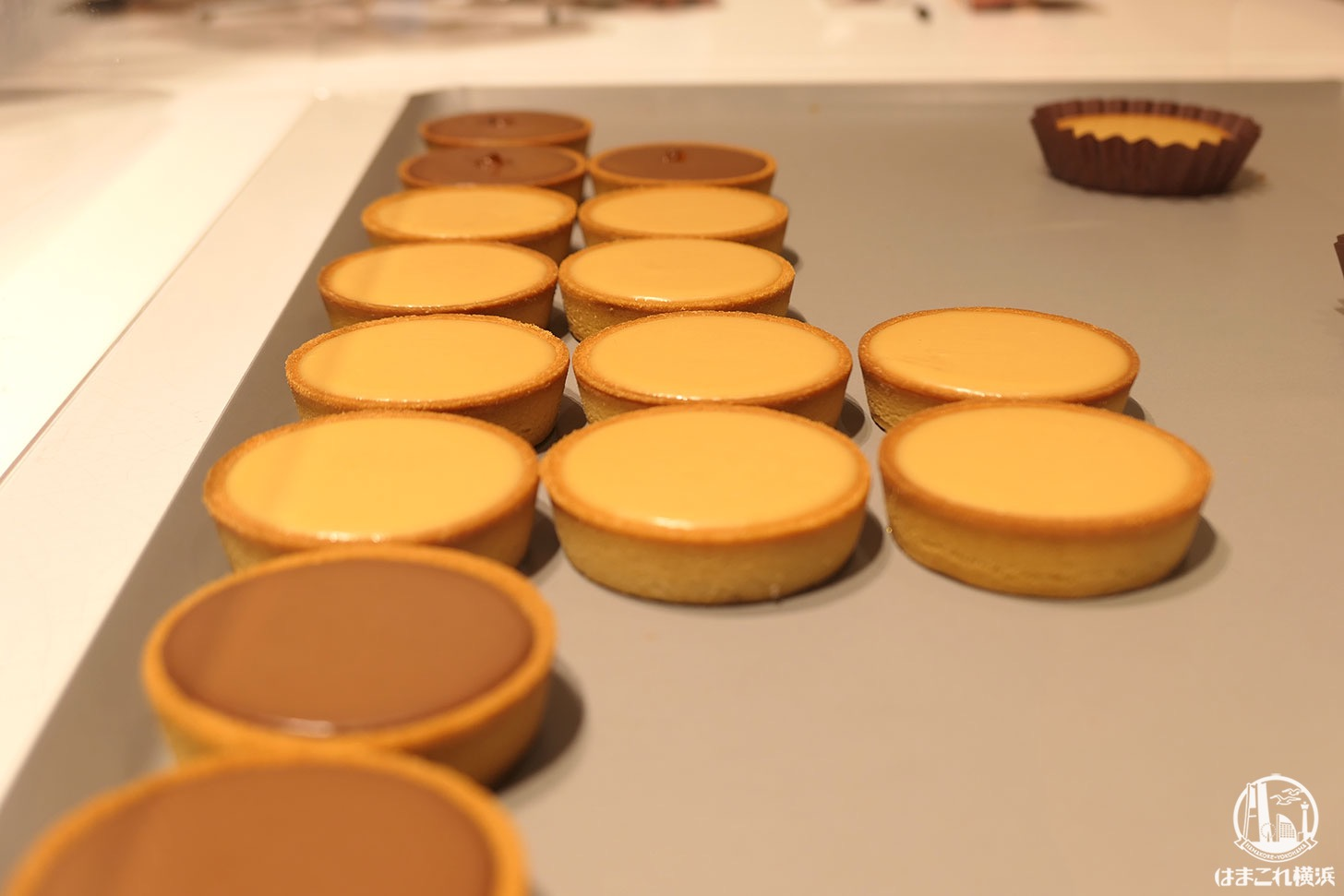 メゾンカカオ ニュウマン横浜店にアロマ生チョコレートやカカオ使ったコスメ、限定商品も
