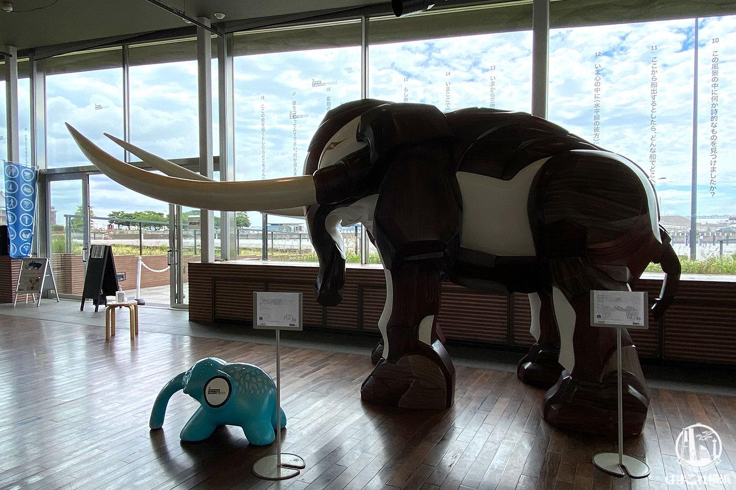 時をかける象「ペリー」