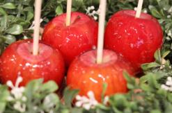 りんご飴専⾨店「キャンディーアップル」そごう横浜店に横浜初出店!限定でほうじ茶りんご飴も