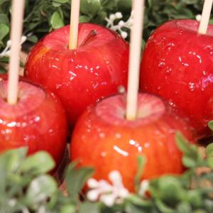 りんご飴専⾨店「キャンディーアップル」そごう横浜店に横浜初出店!ほうじ茶りんご飴も