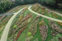 ガーデンネックレス横浜2020「秋の里山ガーデンフェスタ」開催!約120品種25万本の花々