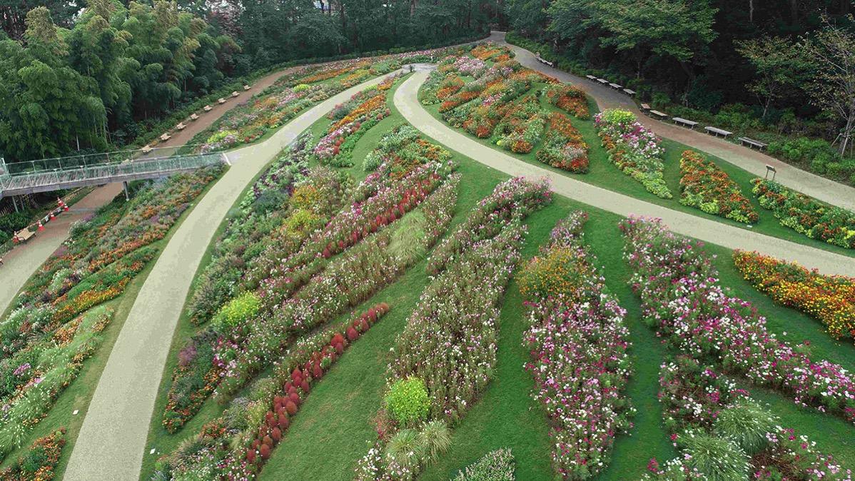 里山 ガーデン 2020