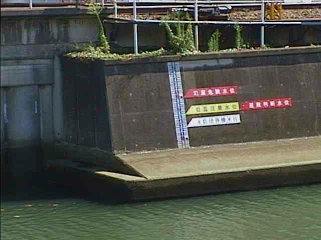 帷子川 通常時の水位
